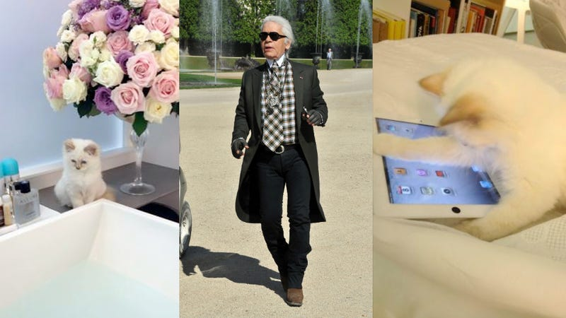 Karl Lagerfeld Straight-Up Stole His Boytoy's Cat