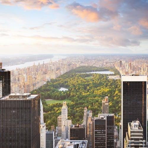 Central Park So Far This Year: Seven Rapes, 56 Grand Larcenies