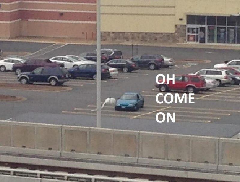 Adventures in Parking