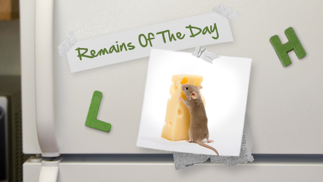 Remains of the Day: Mac OS X Has a RAT Problem