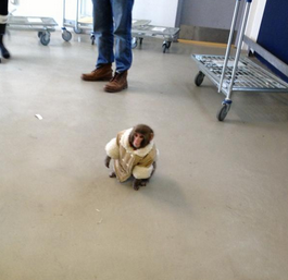Monkey with stylish winter coat spotted at Toronto Ikea