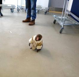 Monkey with stylish winter coat spotted at Toronto Ikea
