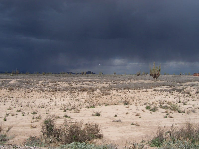 Rain is coming down in the desert