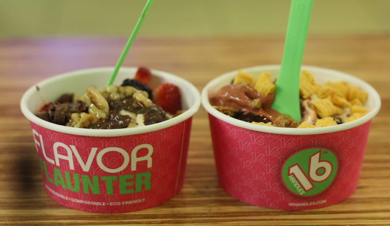 Man Sues Food Network for Failing to Give Him a FroYo Shop