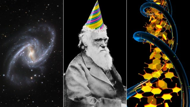 Happy Darwin Day, you damn dirty ape-cousins!