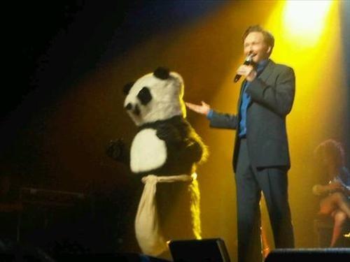 Rare 'Self-Pleasuring Panda' Spotted at Conan O'Brien's First Live Show
