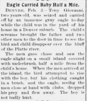 An Eagle Really Did Attack a Baby in 1901