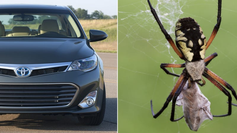 Toyota Recalls 870,000 Cars Because Of Freaking Spiders