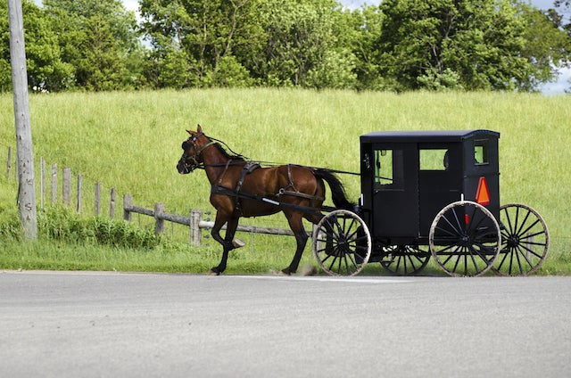 Horse and Buggy Robbed by Masked Gunmen