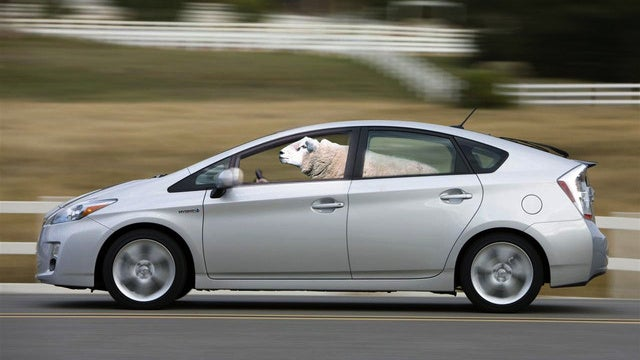 'New Prius Helps Environment By Killing Its Owner'