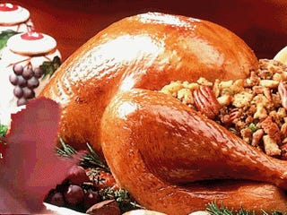Your Turkey Day Gif Party Starts Now