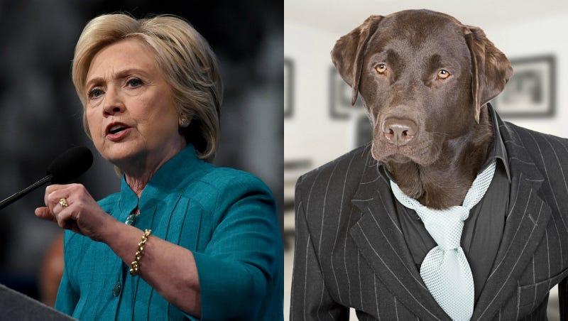 Should Hillary Clinton's VP Be a Dog?