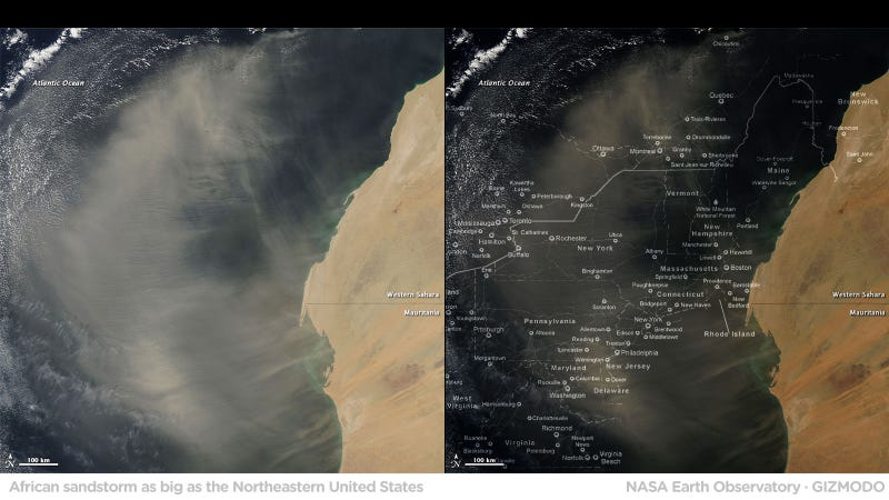 This Sandstorm Is So Big That It Could Eat The Entire Northeastern United States