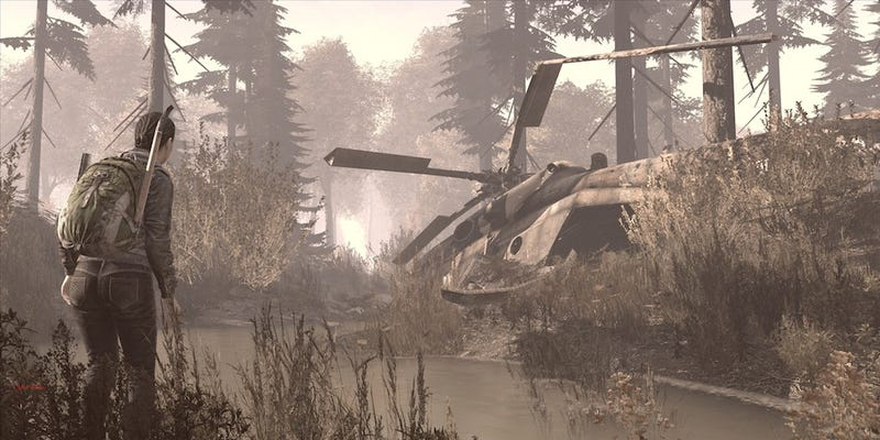 Photos From The Frontlines of DayZ