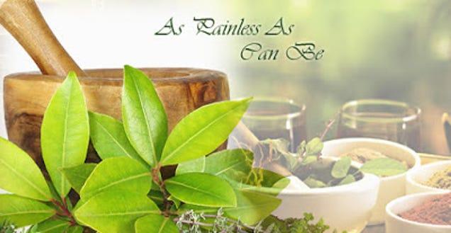 herbal and natural medicine essay