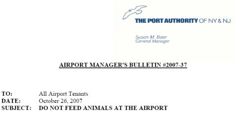 Port Authority Starves JFK Cat Town!