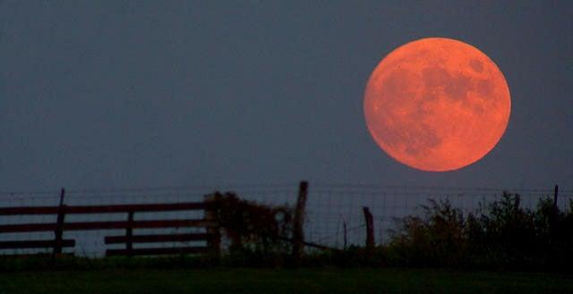 Go Enjoy the Harvest Moon Tonight and Tomorrow