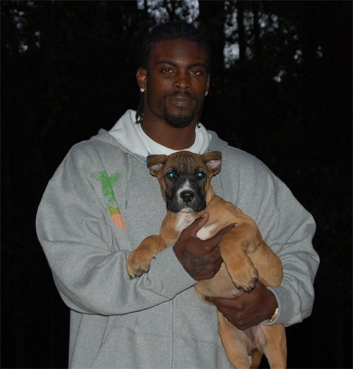 What Kind Of Dog Will Michael Vick Get?