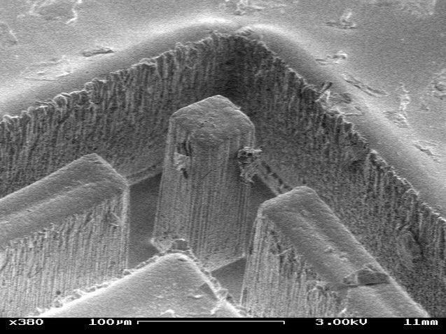 The Microscopic Chambers of the Sea