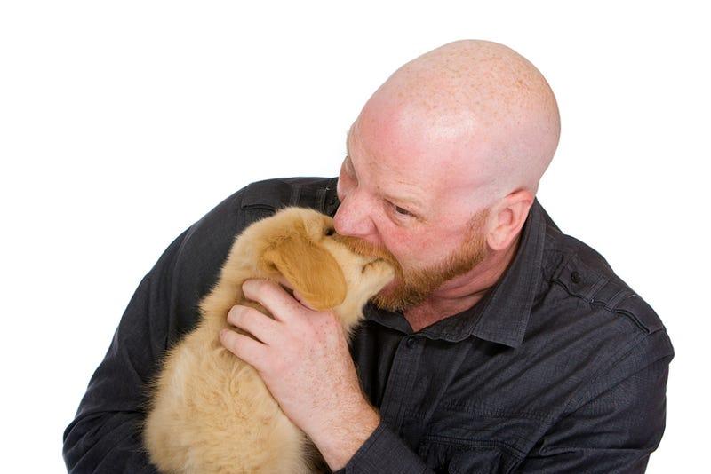 Dog Bites Woman, Man Bites Dog