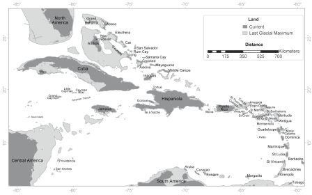 Solving the ancient mystery of what destroyed the bats of the Caribbean
