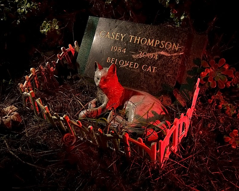 Spooky photographs of San Francisco's real-life Pet Cemetery