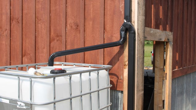 Easily Collect Rain Water for Gardening or Other Outdoor Needs