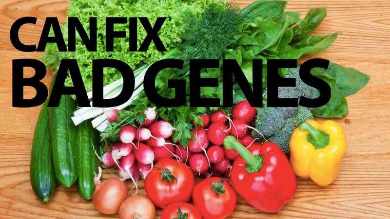 Eat Your Greens, Change Your Genes