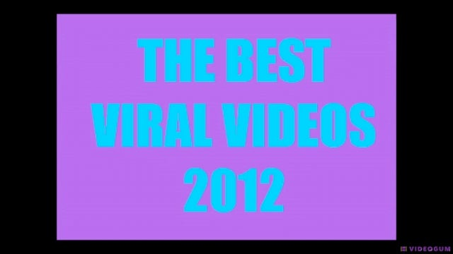 Watch the Best Viral Video Mashup of the Best Viral Videos of 2012