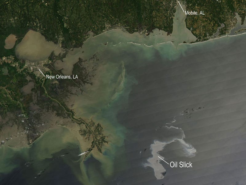 Rush Limbaugh: Oil Spill Was Deliberate Act By Environmentalists