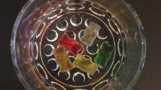 Gummy Bears Taste Good But They're Fucking Gross When Soaked in Fluid