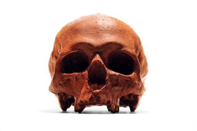 Let's All Eat Some Skulls