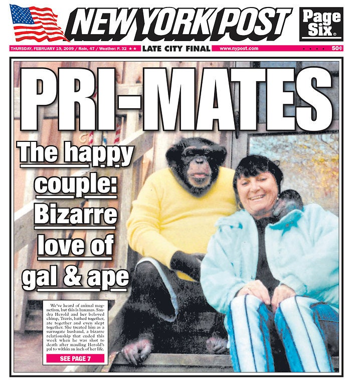 NY Post Is All Over that Monkey Controversy! No, the Other One.