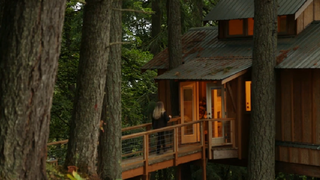 Adults Who Live in Treehouses Aren't as Weird as You M
