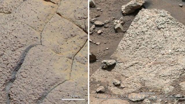 El robot Curiosity revela que pudo haber vida en Marte