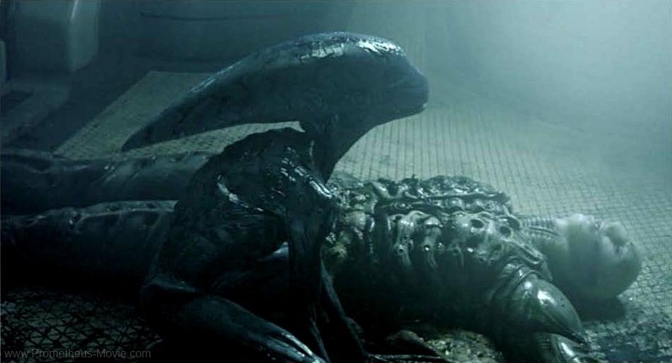 Xenomorph Prometheus Ridley Scott Says Prom...