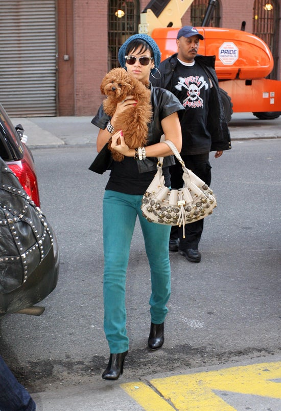 """Rihanna's Psychic Puppy Predicts You Will Say """"Awww."""""""
