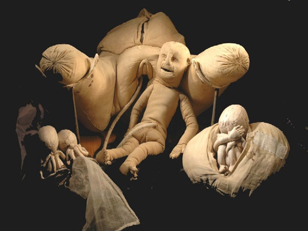 Check Out This Crazy Fabric Womb From the 18th Century
