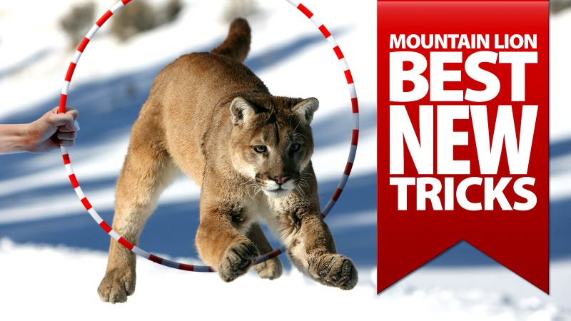 OS X Mountain Lion's Best 10 Tricks: The How-To Video Guide
