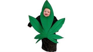 Dress Your Precious Baby as a Dank-Ass Pot Leaf This Halloween
