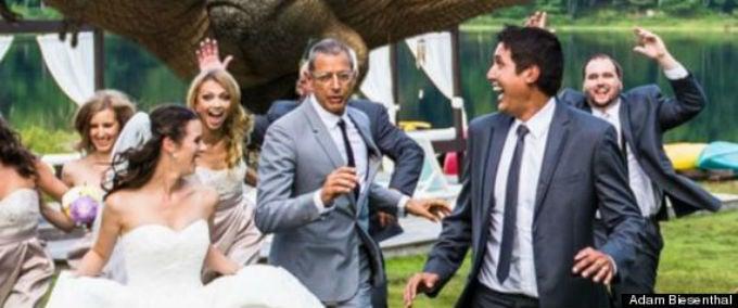 Jeff Goldblum Poses for Couple's Dinosaur Chase-Themed Wedding Photo