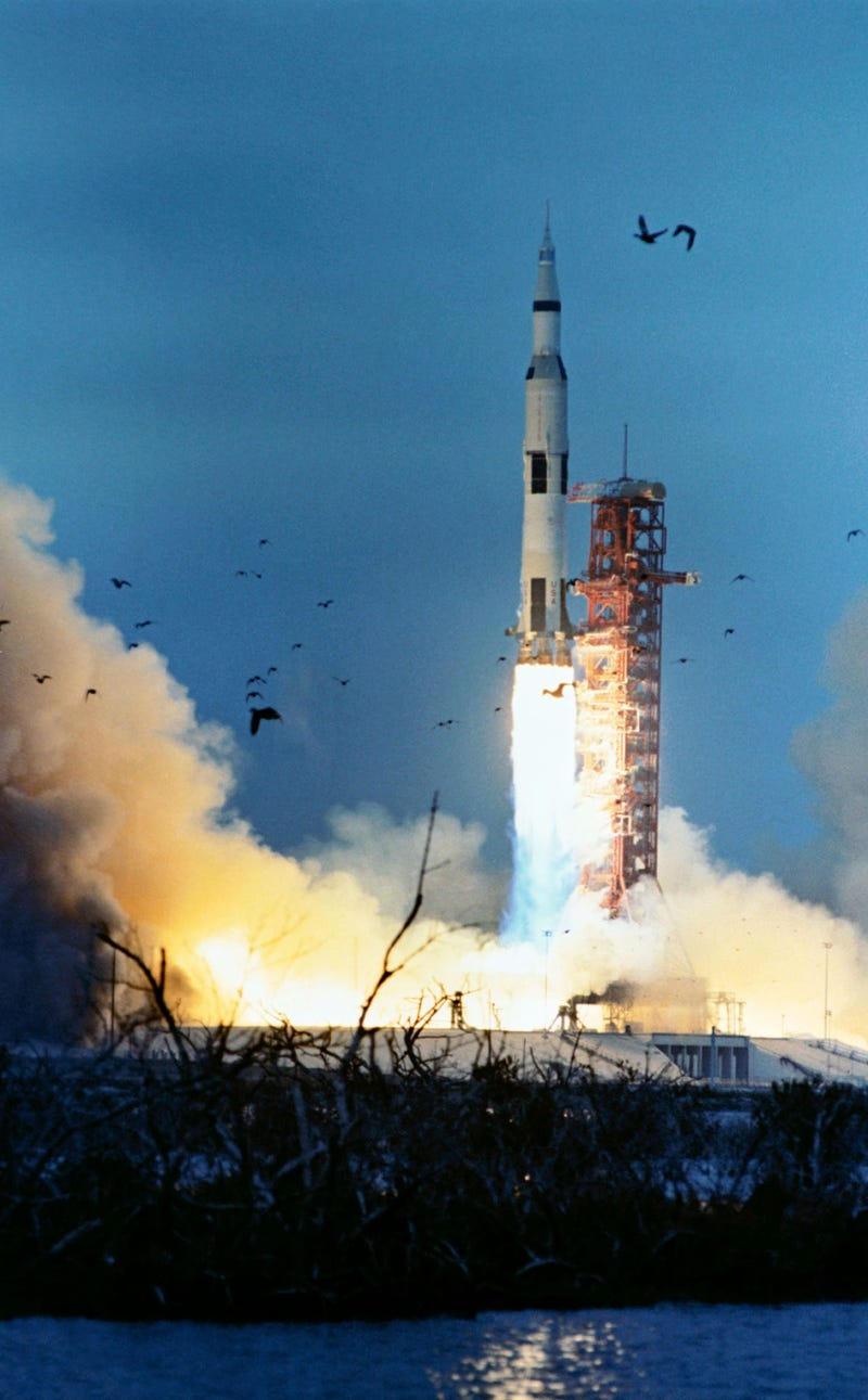 A Brief History of Animals and Rocket Launches Not Getting Along
