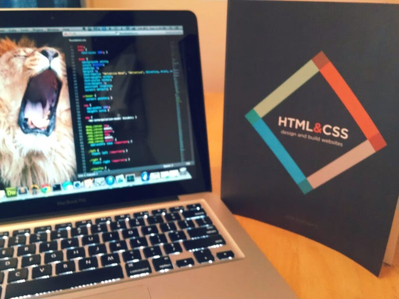 The Best Book For HTML & CSS Beginners