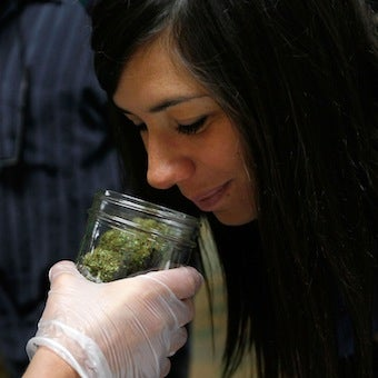 California's Legalize-Marijuana Measure Would Decrease Cost of Weed by 80%