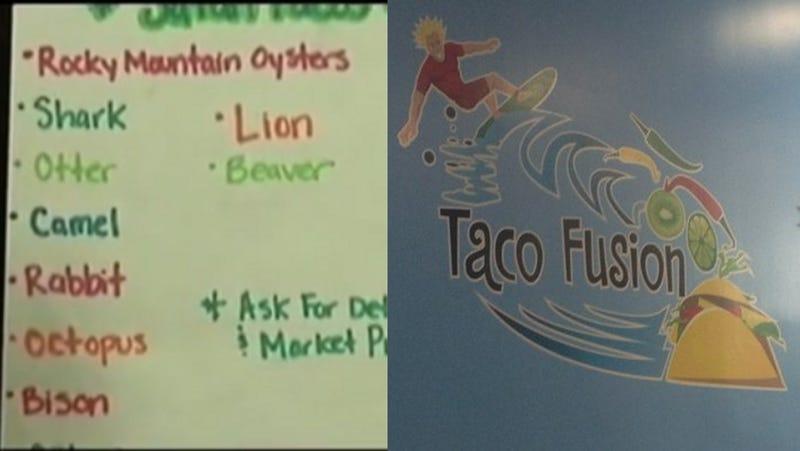 Lion Tacos Pulled from Menu at Florida Restaurant; Shark, Bear Remain