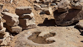 How We Use Ancient Stone-Cutting Techniques To Preserve Dinosaur Tracks