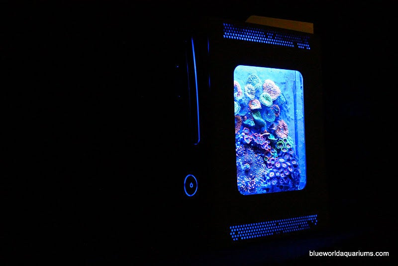 This Xbox 360 Sleeps with the Fishes. No, Really.