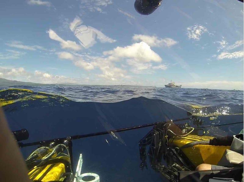 Scientists Investigate Glowing Organisms in Solomon Islands' Dark Waters