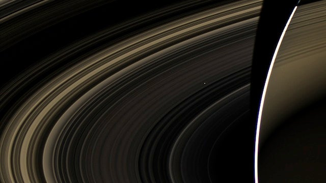 Can You Find Venus Hiding Inside Saturn's Rings?