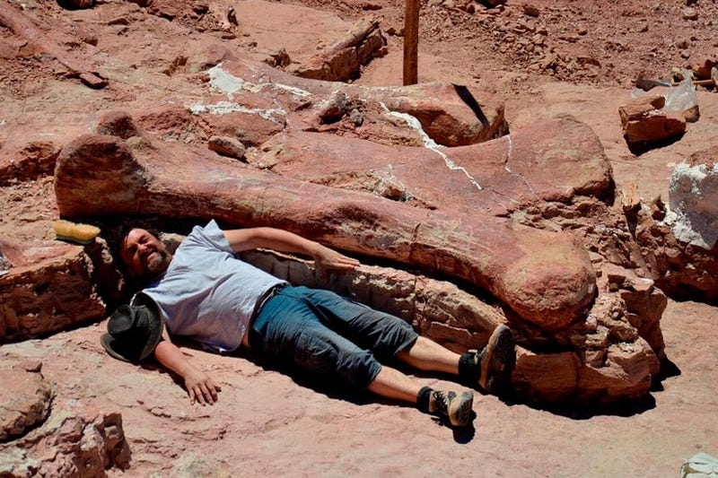 Paleontologists lying near giant dinosaur bones
